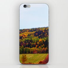 Fall Harvest and the Hills iPhone & iPod Skin