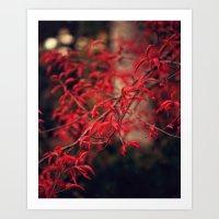 Woodland Red Art Print
