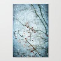 Snowberry Canvas Print