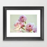 Cymbidium Orchid 9770 Framed Art Print