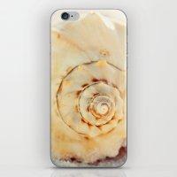 The Whelk II iPhone & iPod Skin