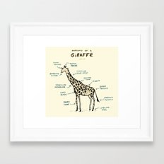 Anatomy of a Giraffe Framed Art Print