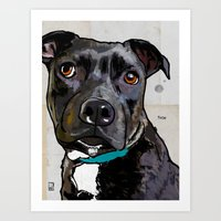 Dog: Staffordshire Bull … Art Print