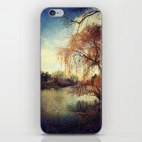 Pond 2 iPhone & iPod Skin