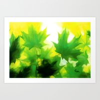MAPLE DAWN Art Print