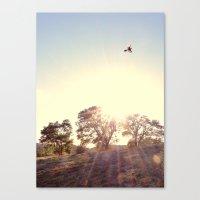 A Hawks View Canvas Print