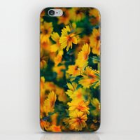 The Happy Colour iPhone & iPod Skin
