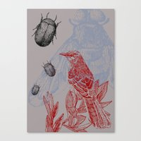 Beetles and Bird Canvas Print