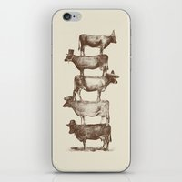 Cow Cow Nuts iPhone & iPod Skin