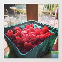 Raspberry Harvest Canvas Print
