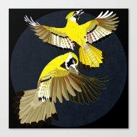 Blue Jays. Canvas Print
