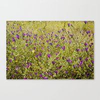 Little Flowers In A Fiel… Canvas Print