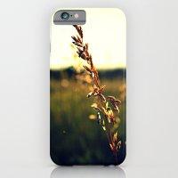 iPhone & iPod Case featuring Prairie Wild - Color by Melanie Ann