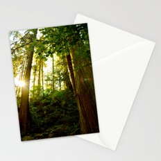 Something 'Bout The Sun Between The Trees Stationery Cards