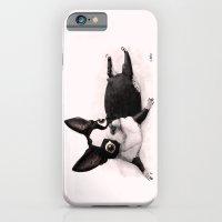 iPhone & iPod Case featuring The Little Fat Boston Terrier by Caro Bernardini
