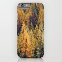Autumn Tamarack Pine Trees iPhone 6 Slim Case