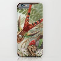 iPhone & iPod Case featuring Flying Fish by Emily A Robertson