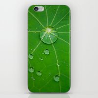 water pearls iPhone & iPod Skin
