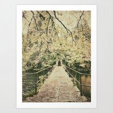 Ireland's Secret Garden Art Print