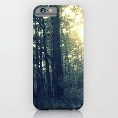 Dual Nature Slim Case iPhone 6s