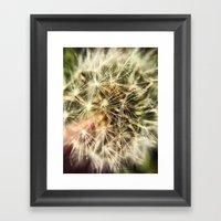 Dandelion Bliss Framed Art Print