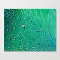 Emerald Feather Canvas Print