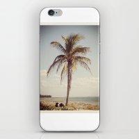 Palm Tree Water Tropical… iPhone & iPod Skin