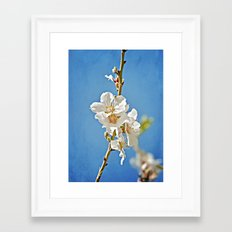 Almond Blossoms in a Clear Blue Sky Framed Art Print