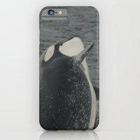 Orca Whale iPhone 6 Slim Case