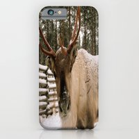 Adorable In The Arctic iPhone 6 Slim Case