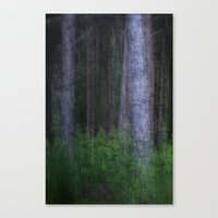 The Dark Woods Canvas Print