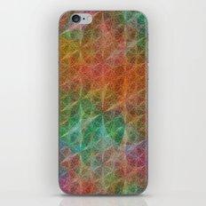 Kiwi iPhone & iPod Skin