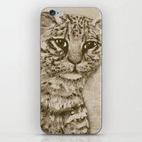 Ocelot Watching, By Ave … iPhone & iPod Skin