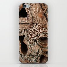 ceramic iPhone & iPod Skin