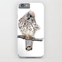 Kestrel iPhone 6 Slim Case