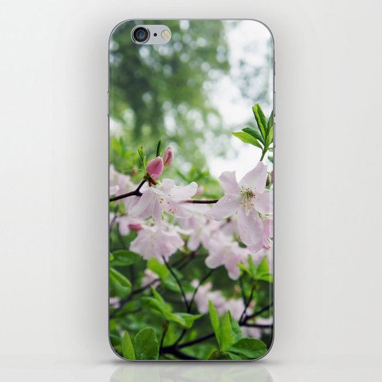 secret garden 14 iPhone & iPod Skin