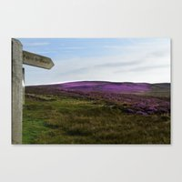 The Heather Canvas Print