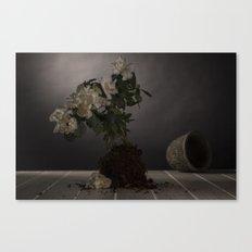 soiled Canvas Print