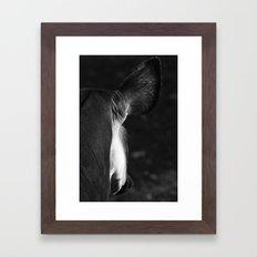 Okapi Framed Art Print