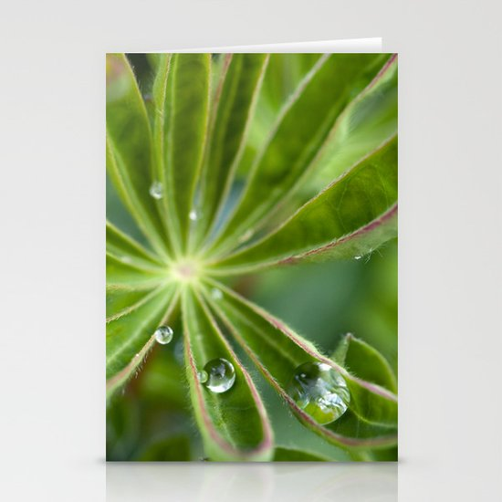 Lupin after rain 5111 Stationery Card