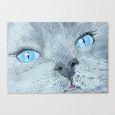 Blossom the Ragdoll Cat Canvas Print