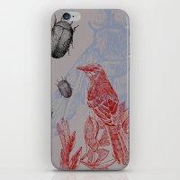 iPhone & iPod Skin featuring Beetles and Bird by VitaliGisko