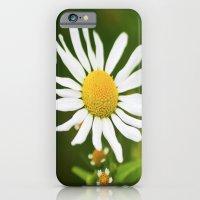 Wild Daisy iPhone 6 Slim Case