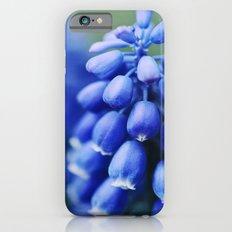 Grape Hyacinths iPhone 6 Slim Case