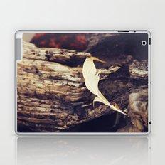 Beach Feathers Laptop & iPad Skin
