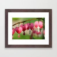 Flowers 4 Framed Art Print