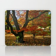 Red Autumnal Leaves Laptop & iPad Skin