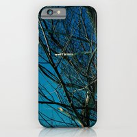 iPhone & iPod Case featuring The Norwegian Trees by Elise Tyv