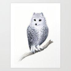 Snowy Fowl Art Print
