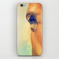 Horse Dreaming iPhone & iPod Skin